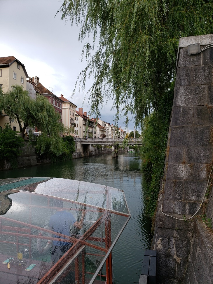 photo from the queue of the river. Bottom left corner you can see the front of the glass topped boat, right side shows the brick wall of the river with a weeping willow hanging over it. View in the background is the city with a bridge.
