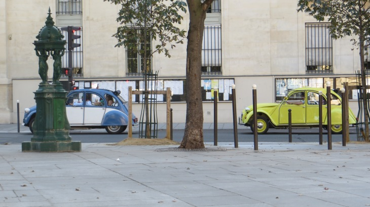 two old Volkswagon Beetle cars. The first is blue with white doors and the second is citrus yellow.