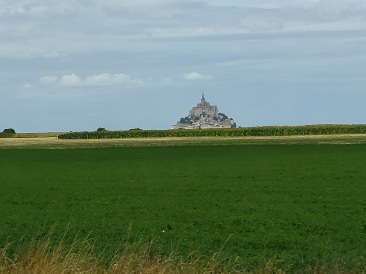 green field, blue grey sky, and a slightly larger blob that is the Mont St. Michel